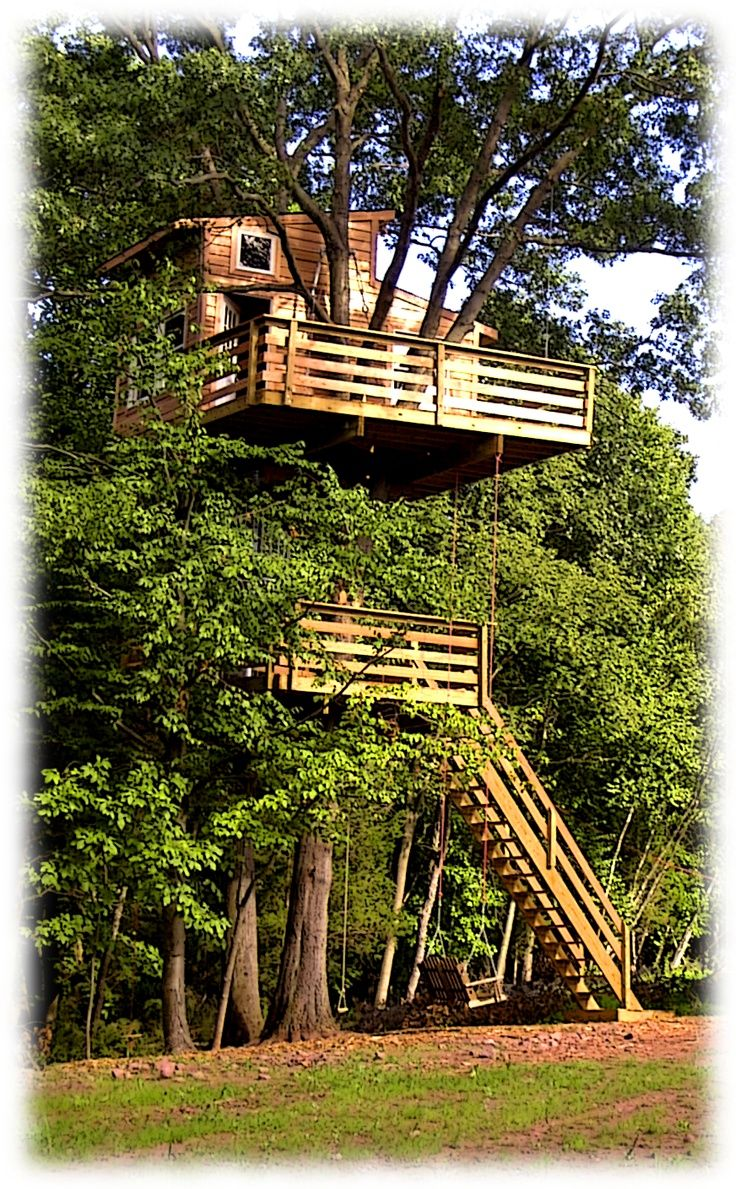 Best 25 Adult Tree House Ideas On Pinterest Tree Forts