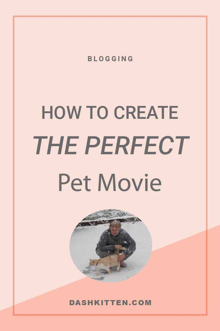Bloggers and Writers need to be ahead of the latest trend - movies to spotlight products, books and blogs.  Let us tell you how to get started. The high confidence and low stress way! (scheduled via http://www.tailwindapp.com?utm_source=pinterest&utm_medium=twpin)