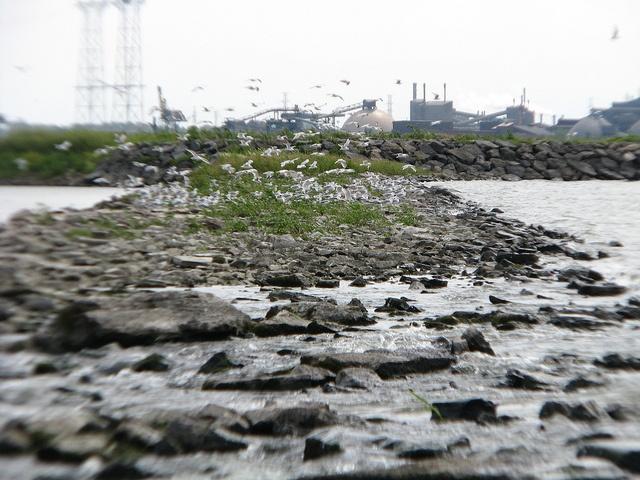 Barrage - île du Milieu - Berthier by douaireg, via Flickr