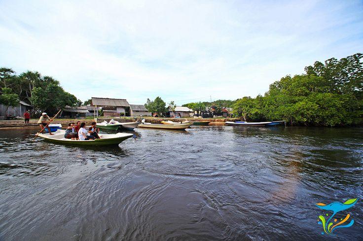 Menyewa perahu untuk menyusuri hutan bakau yang teduh dan tenang.
