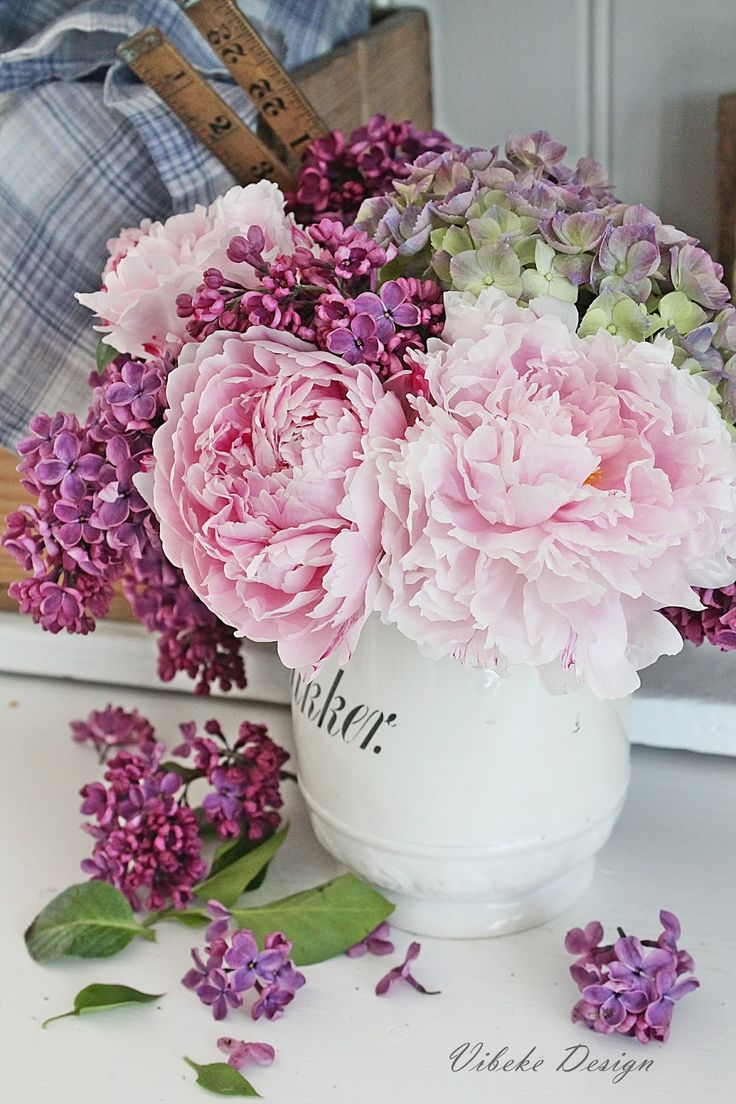 Best peonies and hydrangeas ideas on pinterest