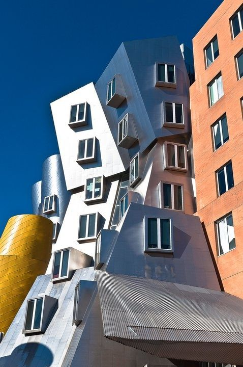 Frank gehry - -