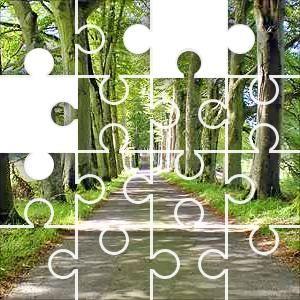 Tree Avenue Puzzle (casse-tête), 67 pièces Classique. A road lined by mature
