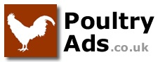 Poultry For Sale and Wanted on Poultry Ads .co.uk. Private / Trade / Breeders