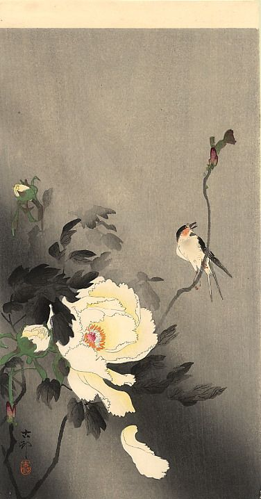 Cherry on a Moonlit Night - Ohara Koson - WikiPaintings.org