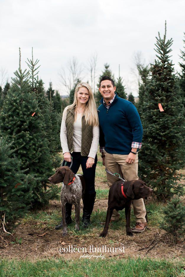 Christmas Catch Up Christmas Tree Farm Pictures Dog Christmas Pictures Tree Farm Pictures