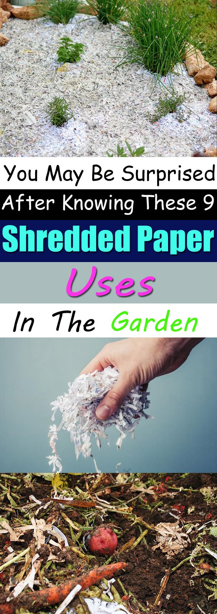 What a fab way to eliminate unused papers. Here're 9 ways to use Shredded Paper in your garden. Check out!