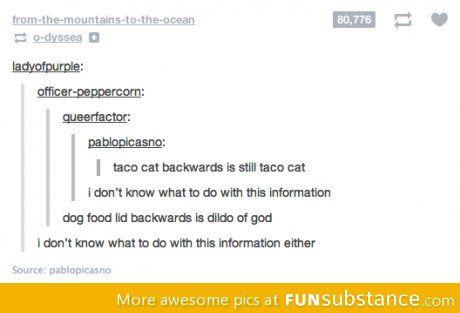 Dog food lid backwards: Giggl Worthi, Entertainment Stuff, Constant Updates, Dog Food, Funny Quotes, Ultimate Medical, Dogs Food, Food Lids, Lids Backwards