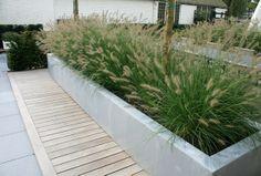 Bakken met grassen leuk en combi hout met grijze steen