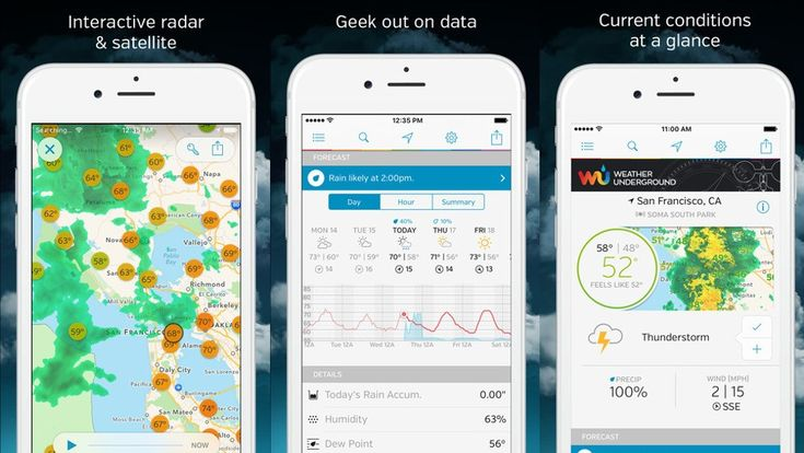 Get a full, detailed weather report in the palm of your hands....