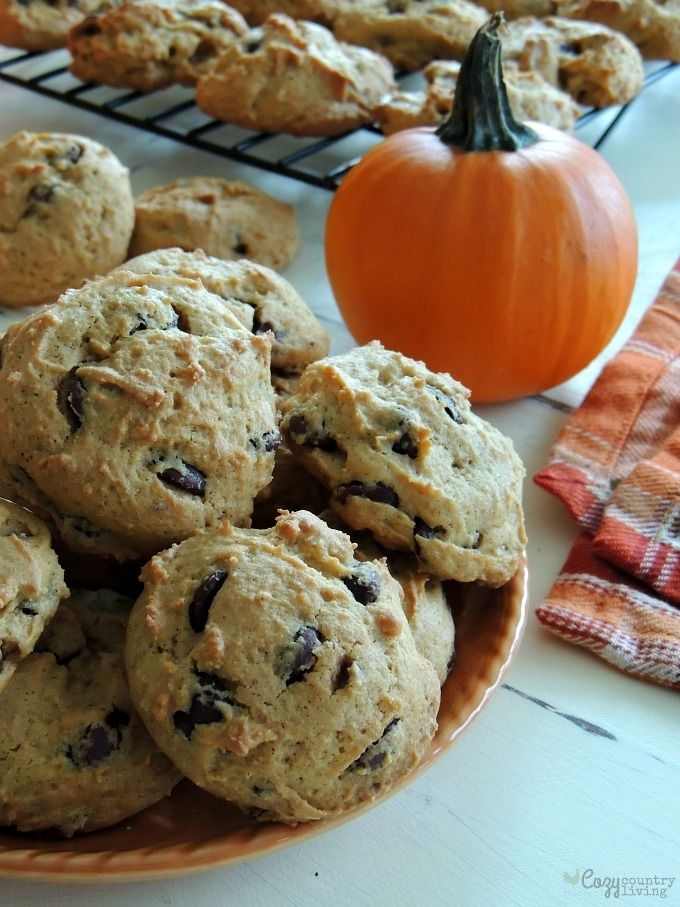 Freshly Baked Pumpkin Spice Chocolate Chip Cookies for Dessert