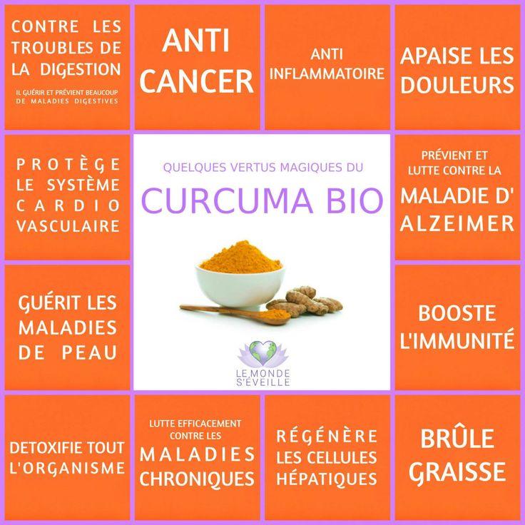 Les Vertus Magiques du Curcuma Bio | Curcuma Le Monde s'Eveille Grâce à Nous Tous ♥