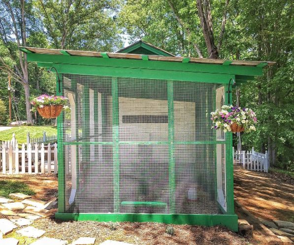 How to build a chicken run and chicken coop. DIY backyard chicken run that's predator proof, where to buy hardware cloth and other items.