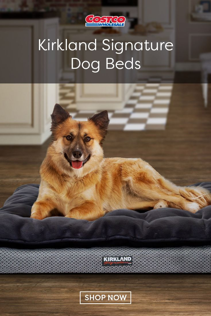 Your pet will sleep soundly in this Kirkland Signature