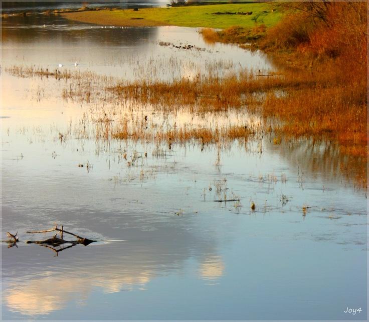 Loire en fin de journée