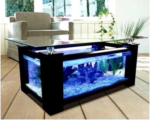 110 best aquariums images on pinterest fish tanks for Fish tank dining room table