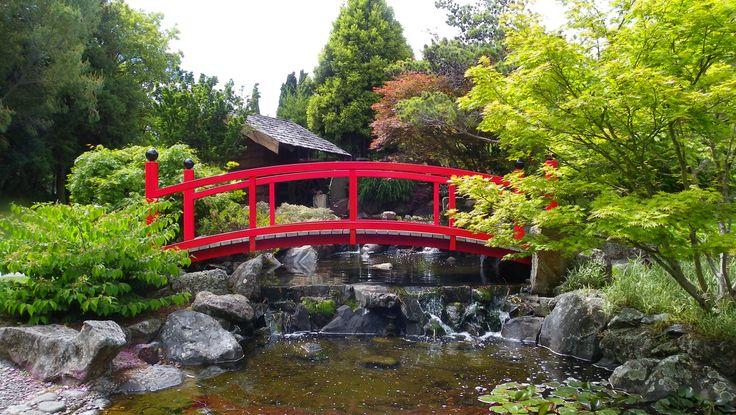 Hobart Botanical Gardens.
