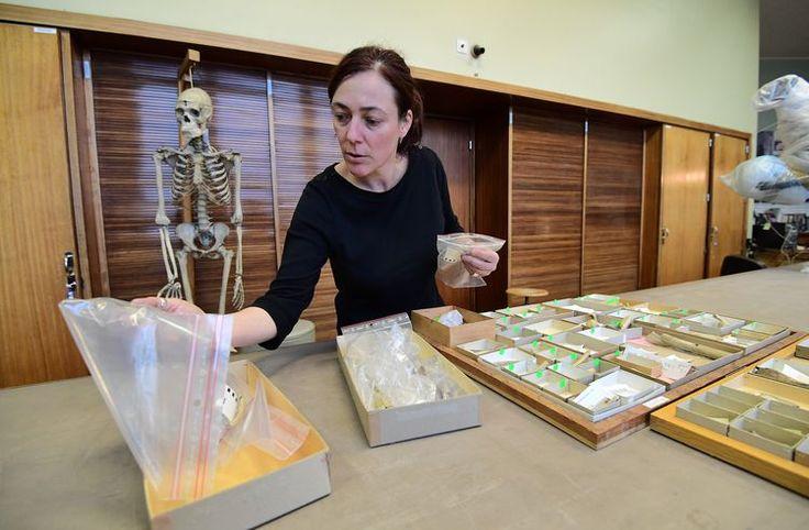 l-anthropologue-francaise-helene-rougier-de-la-california-state-university-northridge-etats-unis-ici-a-bruxelles-le-21-decembre-20161