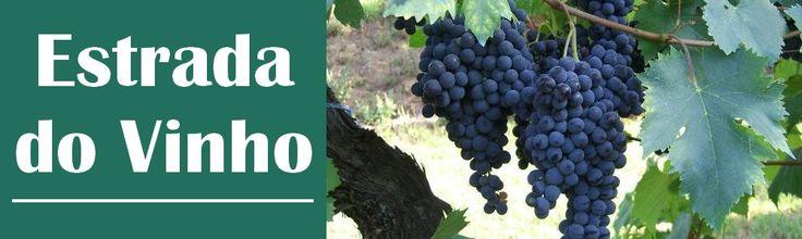 Combina Tudo - O Blog que é Sua Cara: Estrada do Vinho - São Roque - SP