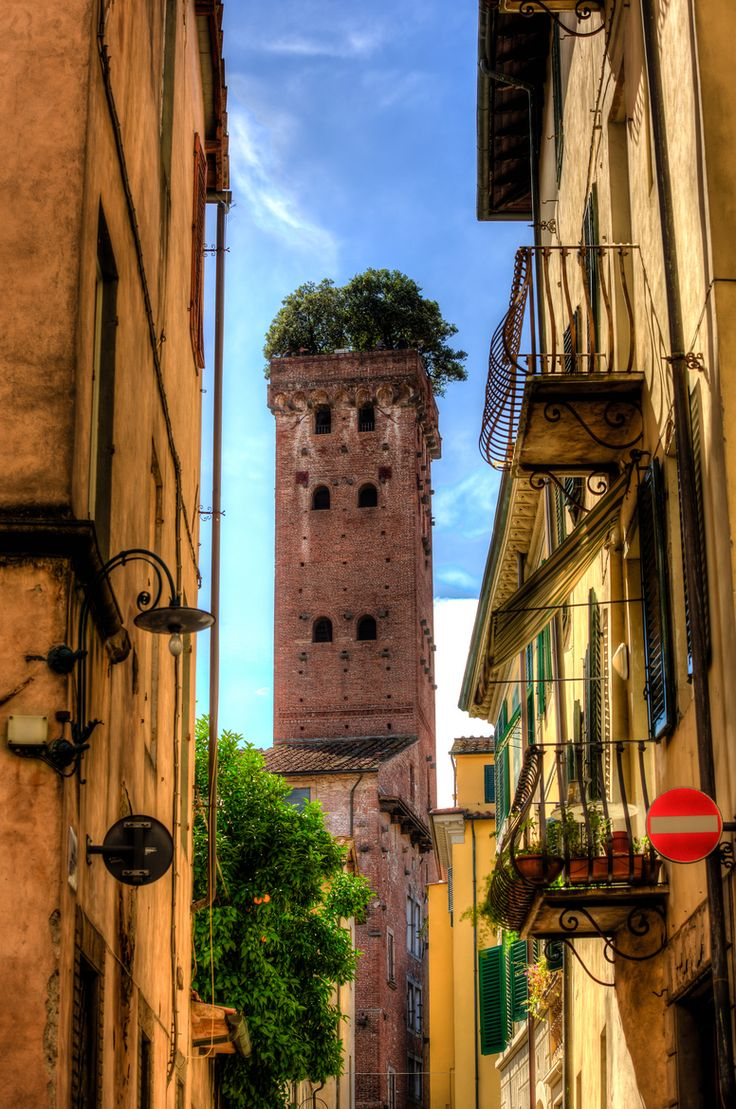 Beautiful shot of the Guinigi Tower with its trees on the roof in Lucca, Tuscany, Italy