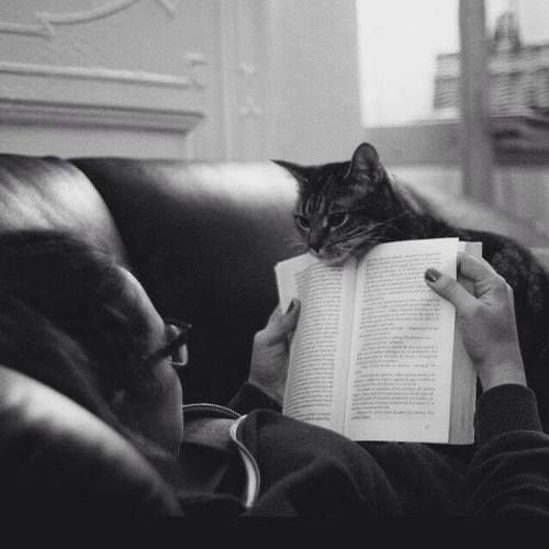 I know your book is good, but i want food and love right now! <3
