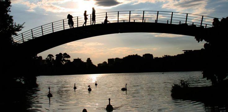 Ibirapuera Park, Sao Paulo-9 Gorgeous Parks in Cities Around the World