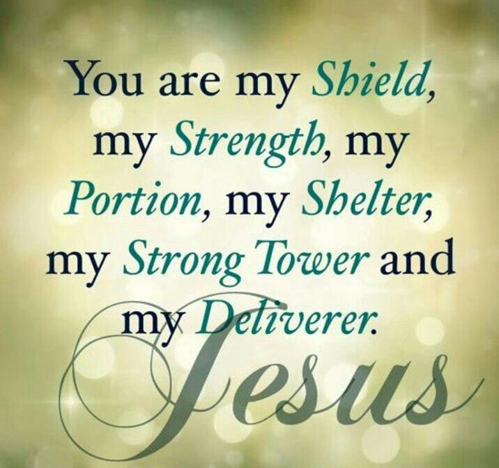 Psalms 18:2 The Lord is my rock and my fortress and my deliverer; My God, my strength, in whom I will trust; My shield and the horn of my salvation, my stronghold.