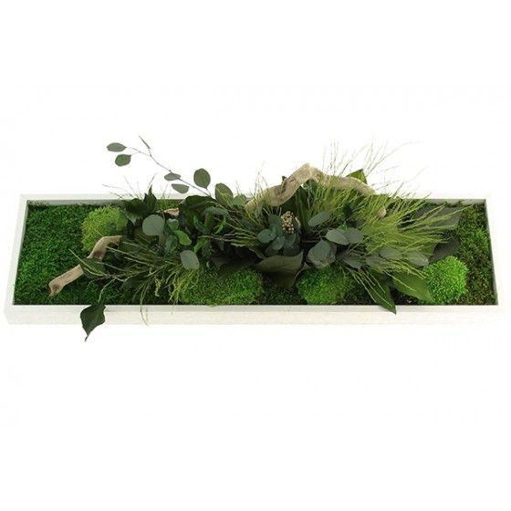1000 ideas about tableau vegetal on pinterest vanda Tableau vegetal mural pas cher