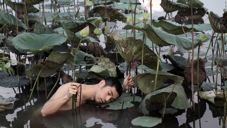 Shen Wei's photographs aren't ordinary portraits -- they're dreams.