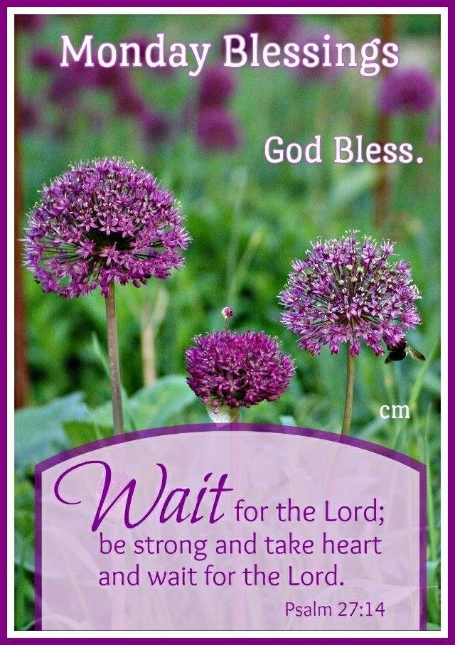 #monday #blessings #goodmorning #good #morning #happymonday #happy