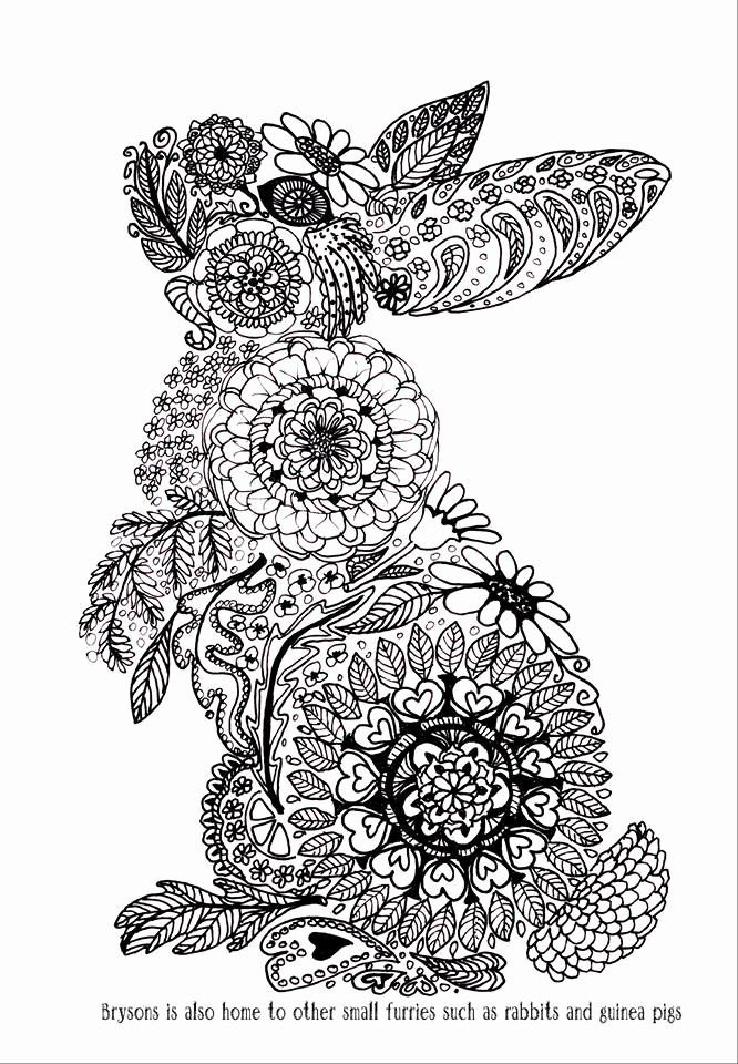 Animal Mandala Coloring Book Beautiful Pin By Margit Ernstsen On Animals To Color In 2020 Mandala Coloring Coloring Pages Mandala Coloring Books
