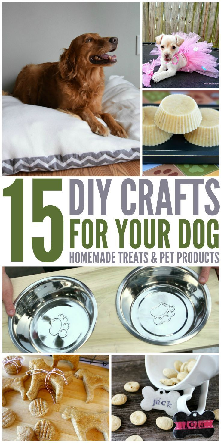 Looking for some awesome DIY projects for dogs, including dog beds, treats, & toys? Check out our 15 DIY Crafts For Your Dog list here!