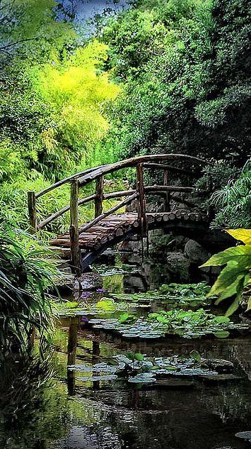 Isamu Taniguchi Japanese Garden's Togetsu-kyo bridge at Zilker Botanical Gardens in Austin, Texas • photo: Judy on Flickr