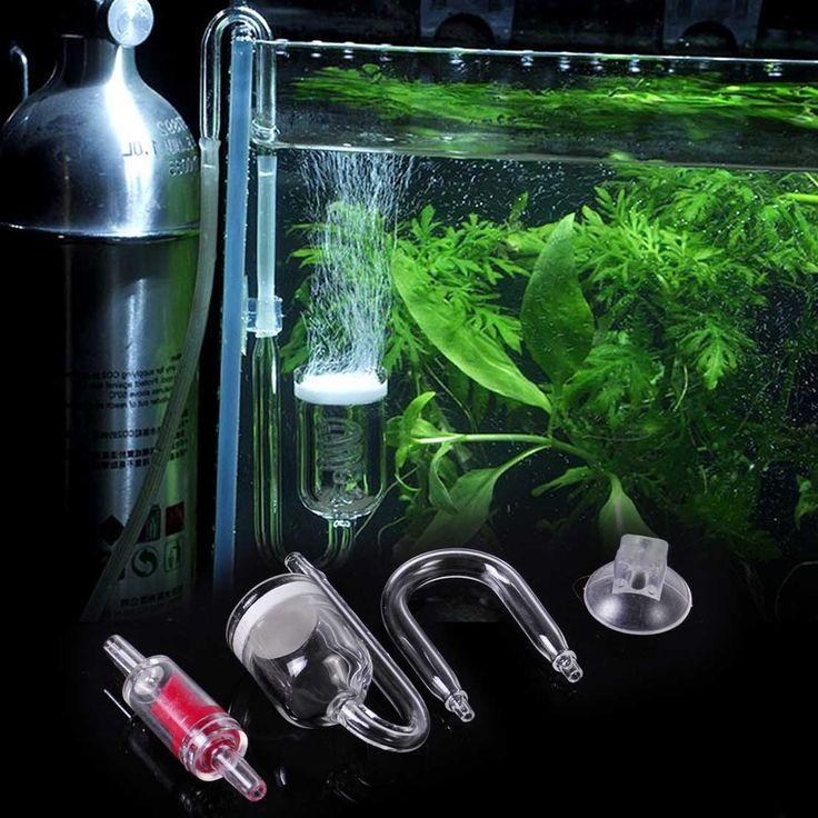 les 25 meilleures id 233 es de la cat 233 gorie aquarium pas cher