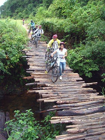 log bridges - Google Search