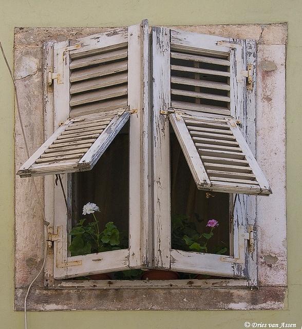 CroatiaCorner Windows, White Shutters, Art Croatia, Old Windows, Pula Croatia, Wall Windows Doors G, Places, Shutters Windows, Croatian Inspiration