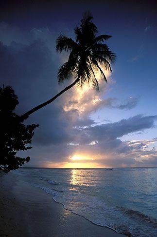 Tobago, Sunset, Pigeon Point