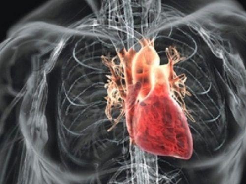 Iminenta pandemie de boli cardiovasculare     În ultimii 30 de ani în unele țări apusene mortalitatea prin boli cardiovasculare a scăzut în timp ce în țările în curs de dezvoltare s-a observat o creștere substanțială. În deceniile viitoare morbiditatea prematură și mortalitatea prin afecțiuni cardiovasculare se va dubla și 80% dintre victime vor fi în țările în curs de dezvoltare. Cu excepția unor țări situate în sudul Saharei toate regiunile globului prezintă o creștere marcantă a…