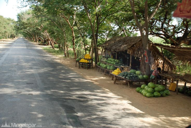 The fruit stall along the road in Monywa