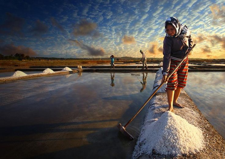 An Indonesian woman and her family harvest salt after a long drought spell.