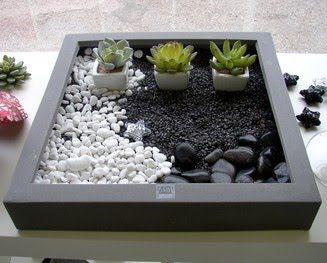 Jardines de cactus y suculentas: Mini jardin zen