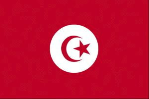 Country Flags: Tunisia Flag