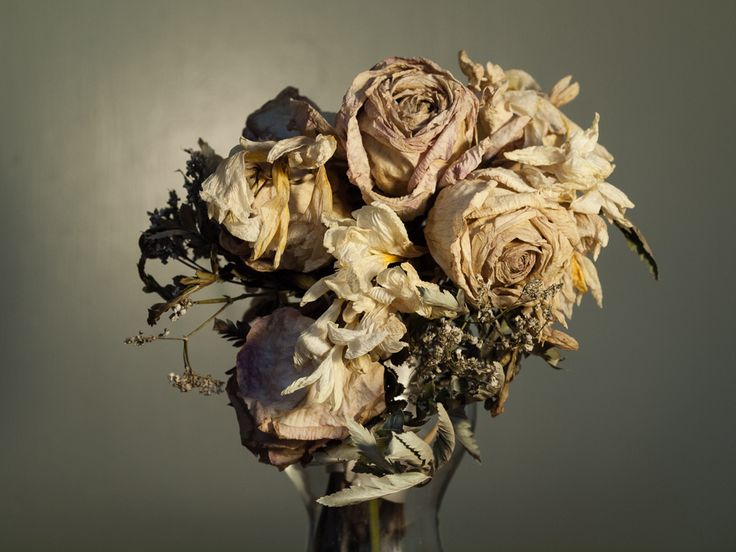 I Think Several Bouquets Of Dead Flowers Wood Look Great Its A Good Metaphor For Life And Death Once Beautiful With Rich Colours Now Muted