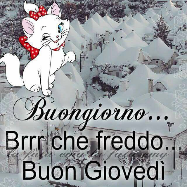 Good Morning Quotes Einstein : Best buon giovedi images on pinterest