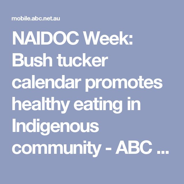 NAIDOC Week: Bush tucker calendar promotes healthy eating in Indigenous community - ABC News (Australian Broadcasting Corporation)