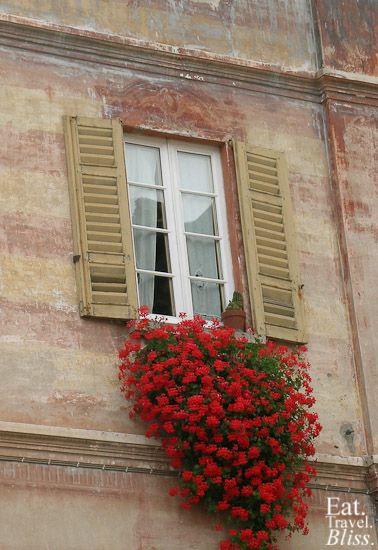 Orta San Giulio - flowers