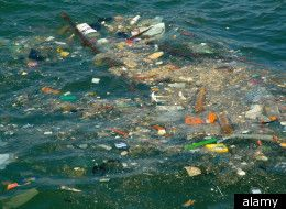 water pollution in japan - Google Search