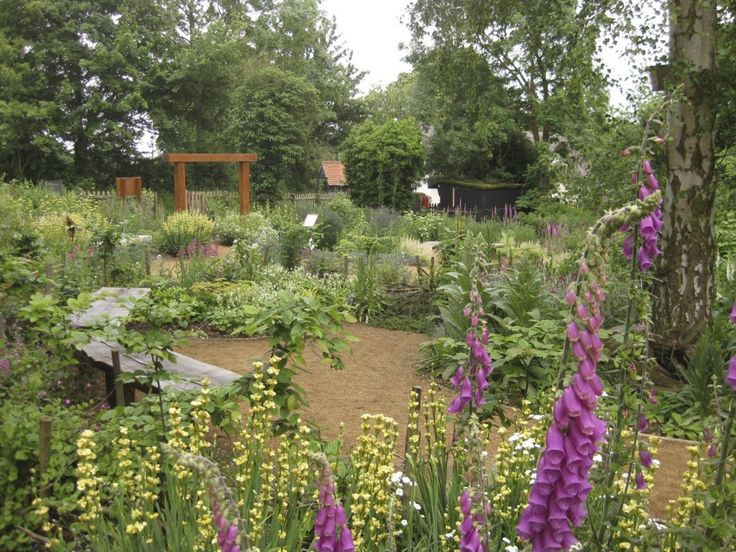 132 best Wildlife Garden Ideas images on Pinterest | Backyard ideas ...