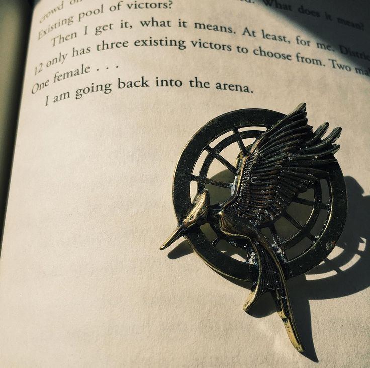 "1,937 Likes, 6 Comments - Hunger Games (@catchingmockingjay) on Instagram: ""; tip: don't take artsy pics of your Mockingjay pins in the ocean, or they will permanently end up…"""