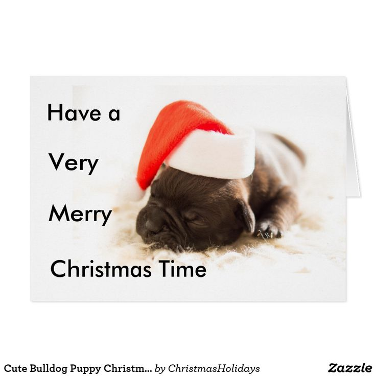 Cute Bulldog Puppy Christmas Card - so adorable, a…